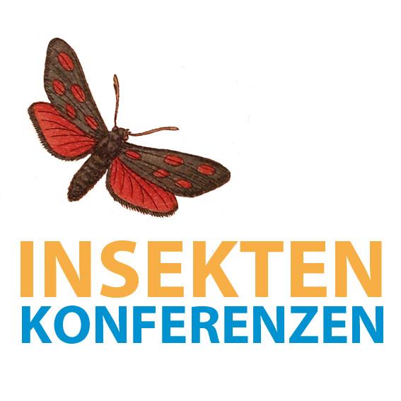 InsekKonfkl.jpg