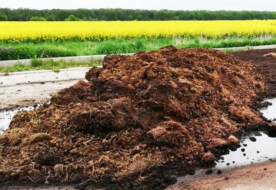 soil_improver_20210527.jpg