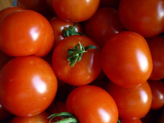 tomatenFF.JPG