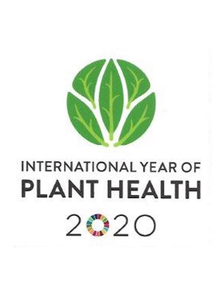 IYPH2020_logo.jpg